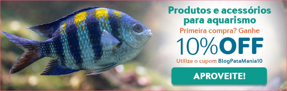 Os melhores peixes para aquário de água doce 1