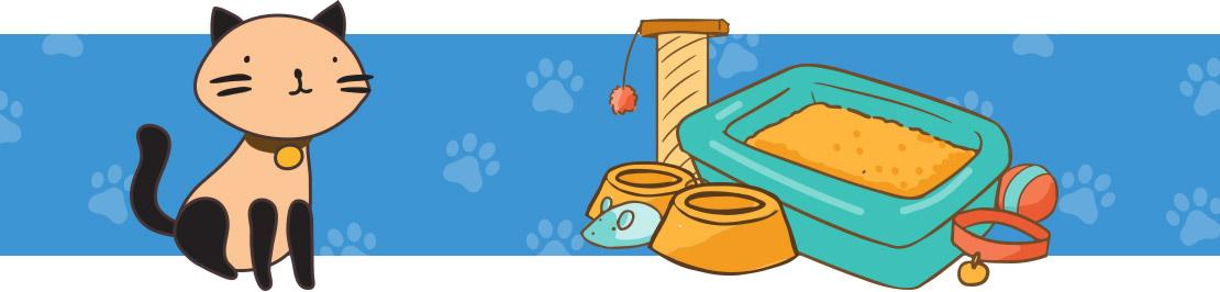 Brinquedos e Acessórios para Gatos