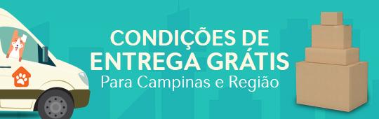 Condições de entrega grátis para Campinas e região.